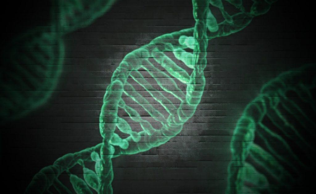 Esiste una predisposizione genetica al panico